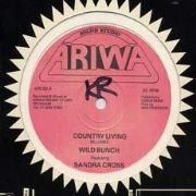 COUNTRY LIVING / DEVIL`S PLAYGROUND. Artist: Wild Bunch  Sandra Cross. Label: Ariwa